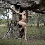 angela-fallen-tree_500tmb-7